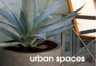 Aloe Design - Urban Spaces