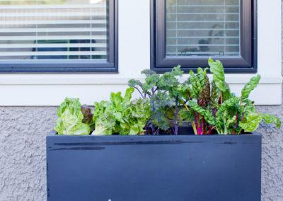 edible-gardens-01