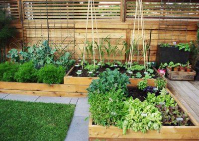 edible-gardens-03